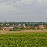 Blick auf das Gästehaus Friedrichshof Ingenheim / Pfalz