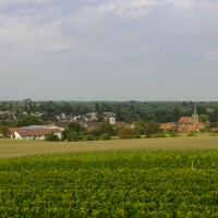 Weingut und Gästehaus Friedrichshof - Südliche Weinstraße