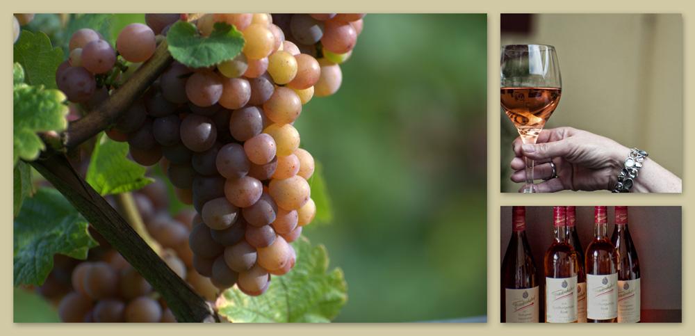 Rosewein - Weingut Friedrichshof - Deutsche Weine von der Südlichen Weinstraße / Pfalz