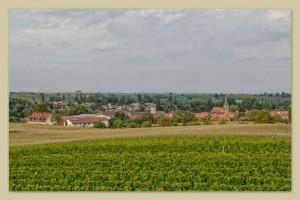 Gästehaus und Weingut Friedrichshof - Billigheim-Ingenheim