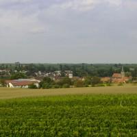 Weingut Friedrichshof Pfalz in Ingenheim
