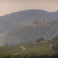 Wandern in der Pfalz - ein Paradies für Wanderer - hier: Burg Landeck - Klingenmünster
