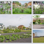 Die Landesgartenschau Landau 2015 hat begonnen